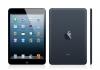 iPad mini 16G black color 99%