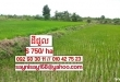 Agricluture Land For Rent